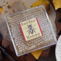 red bee honeycomb